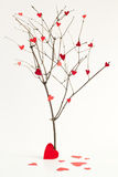Paper hearts on the tree abstract sign of love Royalty Free Stock Photos