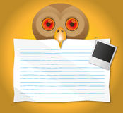 Paper hold in the Owl mouth. Stock Photo