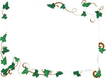 Paper with ivy leaves Royalty Free Stock Photos