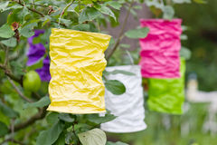 Paper lanterns Stock Images