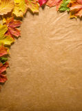 Paper and leaves Stock Photography