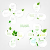 Paper Leaves infographic 01 A. The illustration of beautiful bio infographics with paper leaves charts and diagrams. Ecology and biology natural concept. Vector Royalty Free Illustration