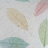 Paper with leaves stock images