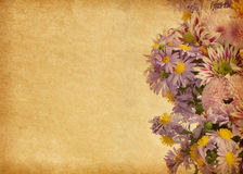 Paper with light violet flowers. Royalty Free Stock Image