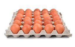 paper magasin för ägg Arkivfoton