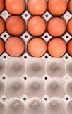 paper magasin för ägg Arkivbild