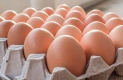 paper magasin för ägg Arkivbilder