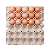 paper magasin för ägg Royaltyfria Foton