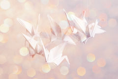 Paper magic origami Stock Image