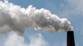 Paper Mill Smokestack Billowing White Smoke Clear Blue Sky stock video footage