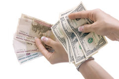 Paper money in hands: Royalty Free Stock Photo