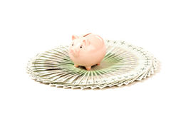 Paper money to use in business with pig Stock Photo