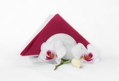 Paper napkins & orchid. Red & White paper napkins in holder and flowers orchid Stock Photos