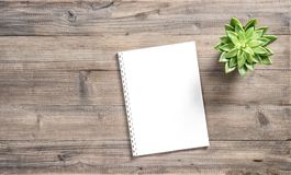 Paper note book succulent plant Flat lay. Paper note book and succulent plant on wooden background. Flat lay Stock Photo