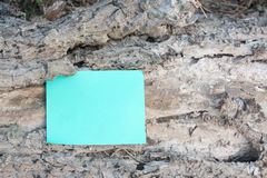 Paper note on dry wood Stock Photos