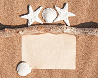 Paper notebook, dry branch and seashells on the sand Royalty Free Stock Photo