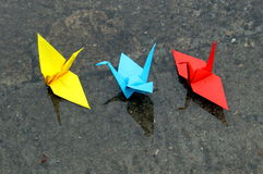 Paper origami cranes in the water Royalty Free Stock Photography
