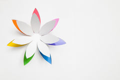 Paper origami flower. On white background. Greeting card stock photos