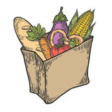 Paper package with fresh healthy produce. Organic products from the farm.. Vegetables, bread, dairy products, corn, eggplant, tomato. Vector hand drawn design Stock Photo