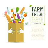 Paper package with fresh healthy produce Royalty Free Stock Image