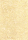 paper parchmenttextur Arkivfoto