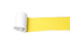 Paper peel. On a white bg stock photos