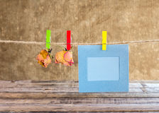 Paper photo frame and dry rose on clothesline Stock Photography