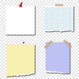 Paper. Pieces of paper, torn pieces of paper. Flat design, vector royalty free illustration