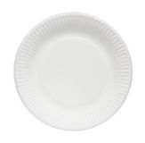 Paper Plate. Royalty Free Stock Images