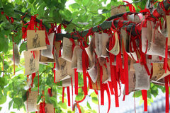 Paper prayers and wishes Royalty Free Stock Images