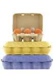 Paper pulp egg tray in different sizes and colors full of fresh Royalty Free Stock Images