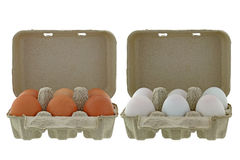 Paper pulp egg tray packages full of fresh chicken and ducks egg Royalty Free Stock Image