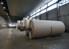 Paper and pulp mill plant - Rolls of cardboard Royalty Free Stock Image