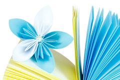 Paper records and flower Royalty Free Stock Images