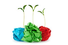 Paper recycling concept with seedlings royalty free stock photo