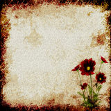 Paper with Red Flowers Stock Images