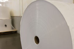 Paper Roll Industrial Printing White Blank Cardboard Tube Detail Royalty Free Stock Photography