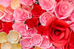 Paper Rose flower backdrop Stock Photos