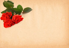 Paper with rose motive Royalty Free Stock Photography