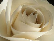 Paper rose Stock Image