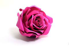 Paper roses on white background Royalty Free Stock Image