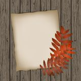Paper sheet with autumn leaves Royalty Free Stock Photography