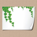 Paper sheet with ivy borders. Royalty Free Stock Photography