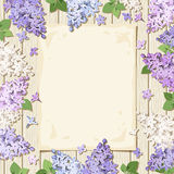 Paper sheet and lilac flowers on a wooden background. Vector eps-10. Stock Photos