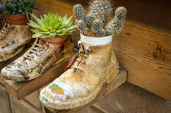 Paper shoes with plants Stock Photos