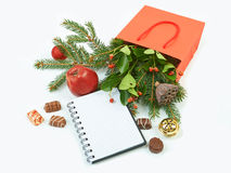 Paper shopping bag with Christmas decorations and notebook isola Stock Images