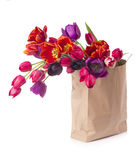 Paper shopping bag with colorful tulips in spring. Tulips in a paper bag on a white background Stock Photo