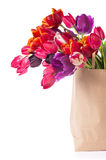 Paper shopping bag with colorful tulips in spring Stock Photos