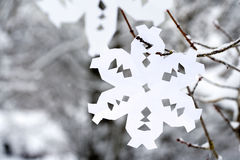 Paper snowflake hanging on a tree Stock Images