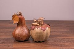 Paper squash and pumpkin on a hardwood ground Stock Image
